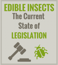 Edible Insects - The current state of legislation